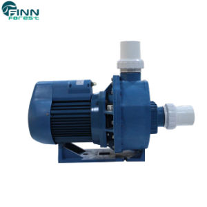 Commercial Electric Motor Swimming Pool Filter Circulation Water Pump Price