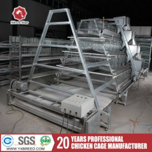 Silver Star Chicken Layer Cage for Sale in Philippines pictures & photos