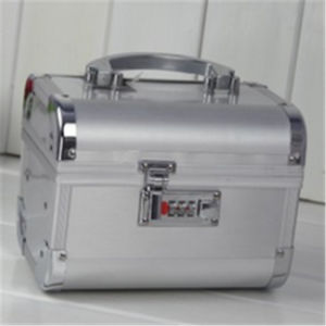 Manufactures Silver Aluminum Double Open Travel Makeup Vanity Case pictures & photos