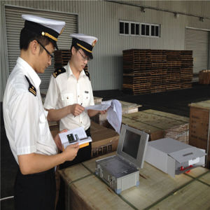 Freight Forwarding Service Export Customs Clearance in Wuhan