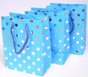 Paper Bag / Paper Shopping Bag / Gift Bag (PB-001)