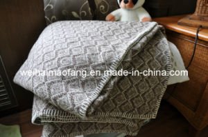 Woven Pure Merino Wool Blanket (Nmq-Wb030) pictures & photos