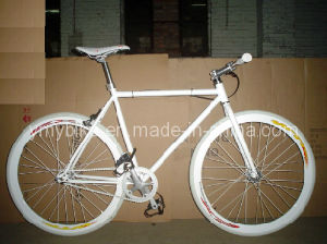 Fixed Gear (AD-FG004)