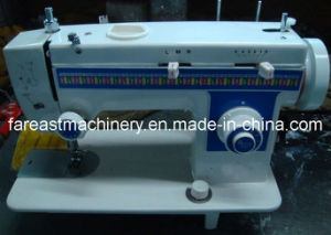 Multi-Function Household Sewing Machine (OD307) pictures & photos