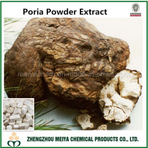 Poria Mushroom Powder Extract with Polysaccharides 5%-30% for Diuretic pictures & photos