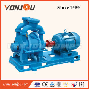 Electric Water Ring Vacuum Pump pictures & photos
