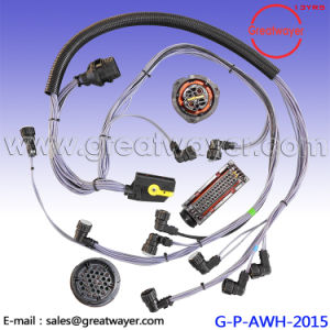Phenomenal China 46 Pin Ecu Truck Wire Harness Loom Protect China Truck Wire Wiring Cloud Rectuggs Outletorg