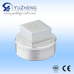 Stainless Steel Thread BSPT Square Plug pictures & photos
