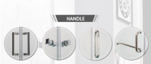 Tempered Glass Shower Enclosure (BA-L734) pictures & photos
