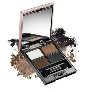 Professional Make-up 4 Earth Colors Eye Shadow Palette pictures & photos