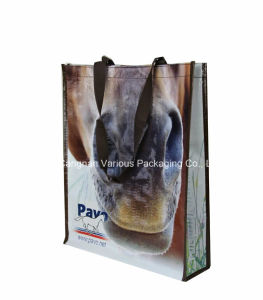 Cartoon Design PP Woven Laminated Shopping Tote Bag for Promotion pictures & photos