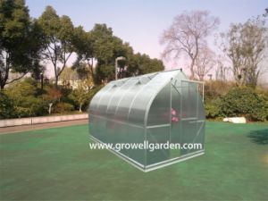 A7 Series Greenhouse for Plants and Flowers (A712) pictures & photos