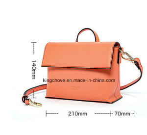 Fashionable Designer Ladies Handbag with Contrast Painting (KCHA035)