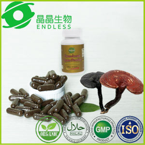 Shell Broken Reishi Mushroom Spore Powder Capsule pictures & photos