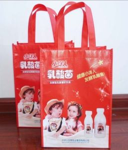 2017 Custom Non Woven Bag for Shopping and Promotion