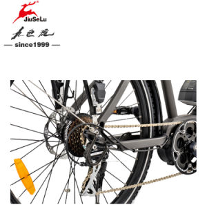 "26"" Hydraulic Disk Brake 250W Brushless Motor Electric Bicycle pictures & photos"