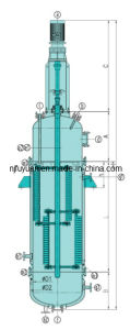 Professional China Glass Lined Falling Film Evaporator pictures & photos
