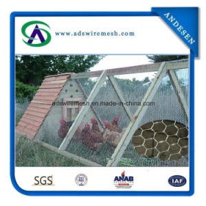 1′′ Hot-Dipped Galvanized & Electro Galvanized Poultry Wire Mesh & Chicken Wire Chicken Wire Mesh pictures & photos