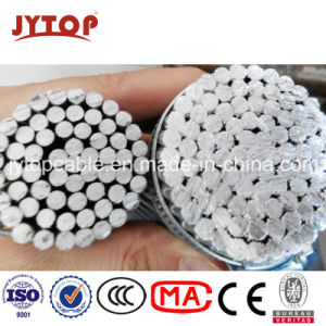 All Aluminum Conductor AAC Spider AAC Conductor to BS215-1 pictures & photos