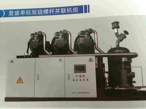 Fusheng Single and Double Stage Compressor Unit Refrigeration Compressor pictures & photos