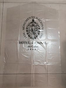 LDPE Custom Printed Garment Cover Plastic Bags for Protection (FLS-8807)