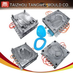 OEM Commodity Mould/Mold (TW-S01)