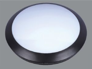 LED 12W Waterproof Ceiling Light IP66 pictures & photos