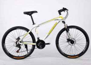 Best Price Aluminum Alloy MTB Bicycle (FP-MTB-A050) pictures & photos