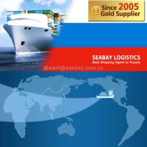 Professional Cargo Shipping From China to Vladivostok pictures & photos