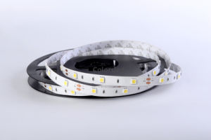 D530 480lm/M 5050flexible LED Strip