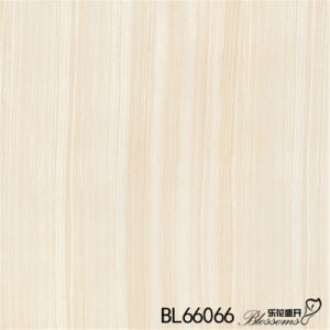 Building Material White Porcelain Flooring Ceramic Floor Tile (600X600mm)