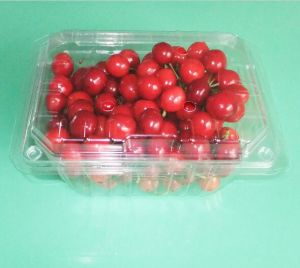 Eco-friendly Health Clear Plastic PP Box for fruit (food packaging) pictures & photos
