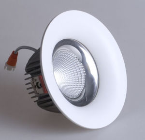 High Brightness COB LED Ceiling Light LED Downlight pictures & photos
