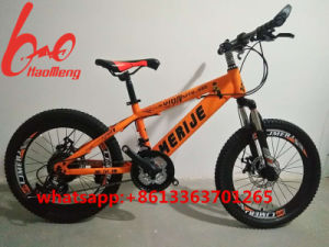 2017new Model Mountain Bicycle with Damping