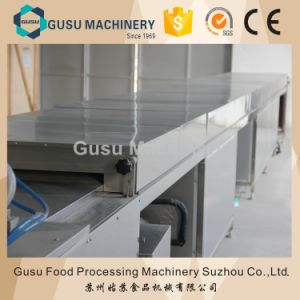 Ce Snack Machinery Small Chocolate Chips Depositing Making Machine (QDJ600) pictures & photos