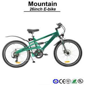 Shock Absorber 36V Electric Bike 250W Motor Bicycle E-Bicycle E-Bike (TDE05Z) pictures & photos