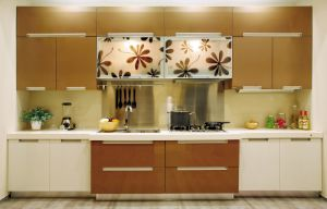 Modern Fashion Customized Kitchen Furniture Pr-K4069 pictures & photos