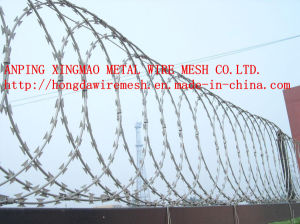 Razor Wire/Barbed Wire/Razor Barbed Wire (fencing mesh) pictures & photos