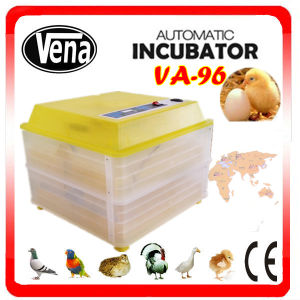 Household Eggs Incubator Can Holding 96 Eggs Temperature Control for Egg Incubator pictures & photos