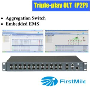Aggregation Switch with Embedded EMS for P2p FTTX System pictures & photos