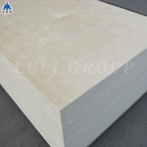 Full Birch Plywood pictures & photos