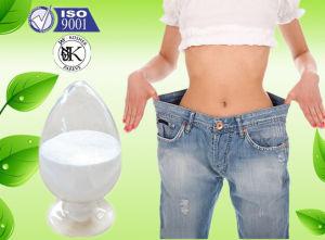 Bio-synergy thermogen fat burner