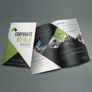Brochure, Books, Catalogue with Custom Printing pictures & photos
