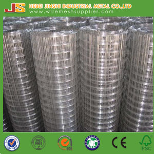 Us Market Smart-Roll Galvanized Welded Wire Mesh pictures & photos