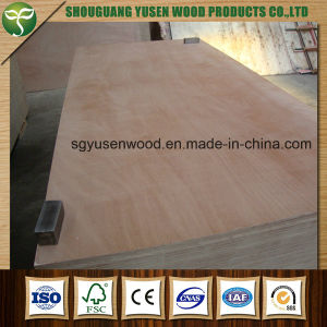 18mm Waterproof Furniture Cabinet Grade Plywood pictures & photos