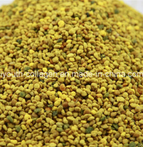 China Top Level, 100% Natural Wild Mountain Flower Bee