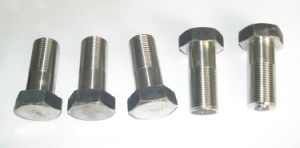 Cold Forging Bolts and Srews pictures & photos