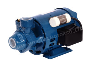Good Quality Pm-16 Electric Water Pump pictures & photos