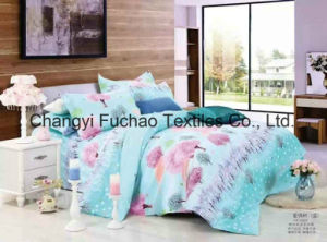 Bedding Set for Classic 6-Piece Modern Feather Home Textile pictures & photos