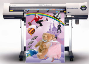 Printing Fold Flyers and Posters (YY-P0012) pictures & photos